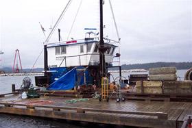 sea roamer overhaul